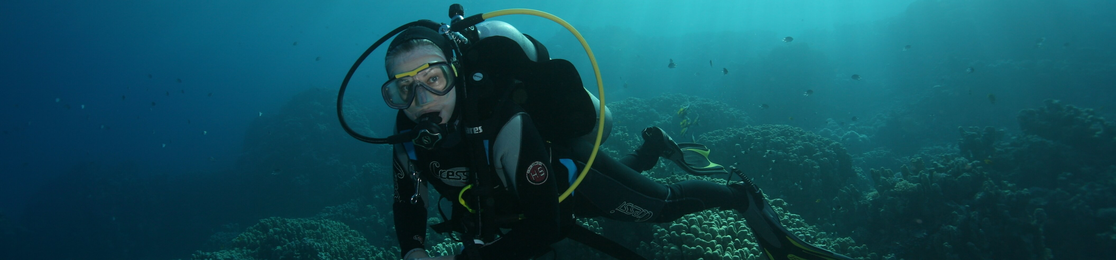 PADI Scuba Diver, Sharks Bay Umbi Diving Village