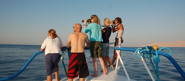 Holiday packages, Sharm el Sheikh, Red Sea